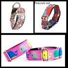 Martingale dog collar Greyhound/Whippet/all breeds. Different Designs * SALE*