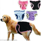 Clean Pet Dog Health Physiological Pants Adjustable Puppy Supply Sanitary Diaper