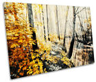Floral Landscape Forest Blossom SINGLE CANVAS WALL ART Box Framed