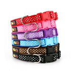 Wholesale Dog Collar and Matching Lead Set - Polka Dot  - Trade Dog Collars