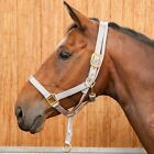 Requisite Anti Rear Headcollar Horse Riding Equestrian Accessories Robinsons New