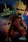 movie of the galaxy - GUARDIANS OF THE GALAXY VOL. 2 - MOVIE POSTER (I AM GROOT) (SIZE: 24