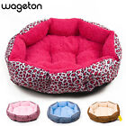 Hot sales! NEW! Colorful Leopard print Pet Cat and Dog bed  Pink, Blue, Yellow