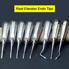 Dental Double Bone Curettes Extraction Surgery Root Elevator Endo Root Tips Aus