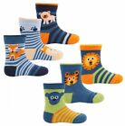 6 pairs Boys Baby Toddler Zoo Animal Print Cotton Rich Socks Size 0-2.5 & 3-5.5