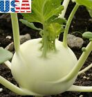 USA SELLER White Vienna Kohlrabi seeds HEIRLOOM NON GMO
