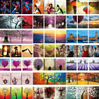 3 Pieces Canvas DIY Paint By Number Kit Digital Oil Painting Home Wall Decor