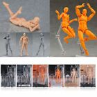 Action Figma Archetype Figure NEXT He/She Male/Female Body Art Toy For Drawing