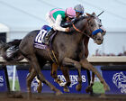ARROGATE 34 RIDDEN BY MIKE SMITH (HORSE RACING) KEYRINGS-MUGS-PHOTO PRINTS