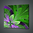 ABSTRACT FRACTAL FLOWER CANVAS PICTURE PRINT WALL ART HOME DECOR FREE DELIVERY