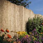 1.8 x 4M Garden Reed Fencing Durable Ideal For Screening Walls & Fences