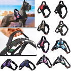 Dog Vest Harness Leash Collar Set No Pull Adjustable For Small/Medium/Large Pet