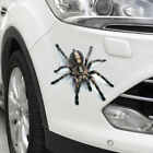 3D Spider Decal crawling car Vehicle Truck SUV window vinyl Hood sticker graphic