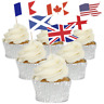 More images of Country Sandwich Flag Cupcake Toppers - 12pk - 37 Flags To Choose From