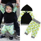 2PCS Toddler Baby Boys Long Sleeve Dinosaur Hooded Tops Pants Outfit Set Clothes
