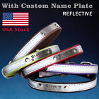 Personalized reflective Dog Collar with name plate Leather C