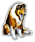 Long Haired Collie Breed Dog Car Bumper Sticker Decal -  9'', 12'', or 14''