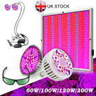 E27 60W 100W 120W 200W Full Spectrum LED Grow Light For Indoor Plants Hydroponic