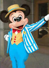 2017 MICKEY AND MINNIE MOUSE MASCOT COSTUME PARTY CLOTHING FANCY DRESS ADULTS