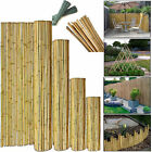2/3/4/5/6 Ft Heavy Duty Professional Bamboo Plant Support Garden Strong Canes