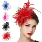 Lady Girl Fascinator Wedding Party Veil Feather Hair Clip Hat Mesh Net Handmade