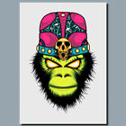 MONKEY MAGIC WHITE ANIMAL METAL POSTER SIGN PLAQUE OR CANVAS OR POSTER WALL ART