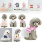 Dog Cat Small Pet Puppy Dress Lace Skirt Princess Summer Spring Stripe Clothes
