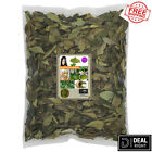 Fresh Dried Curry Leaves & Powder 100% Organic Natural Leaves from Ceylon 50g