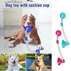 UK Pet Molar Bite Toy Dog Rope Ball Chew Toys Pet Tooth Cleaning Suction Cup DD