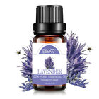 Essential Oils Aromatherapy 100% Pure Therapeutic Grade Essential Oil Aroma USA