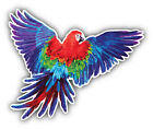 Macaw Parrot Watercolor Car Bumper Sticker Decal  - ''sizes''