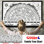 Family Tree Chart Genealogy Poster Home Wall Painting Decor Tree 40*60cm/60*90cm