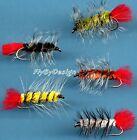 Woolly Worm - Twelve Fly Fishing Flies - Your Choice Hook Size & Fly Color