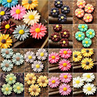 Aha! Resin Cabochons sun flower flatback assorted cameo fashion FREE FAST SHIP