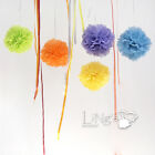 Mixed Large/Medium/Small Handmate Tissue Paper Pompoms Wedding Party Decorations