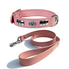 REAL LEATHER STAFF DOG FACE COLLAR + LEATHER LEAD WITH CHROME FITTED IN 6 COLORS