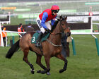 QUEVEGA 03 RIDDEN BY RUBY WALSH (HORSE RACING) PHOTO PRINT
