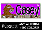 Chestnut HORSE PONY cartoon Personalised name Sign Plaque Stable door tack room