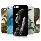 HEAD CASE DESIGNS WILDLIFE CASE FOR APPLE iPHONE 5 5S