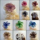 WEDDING / PROM Fascinator with feather spray detail on a clip & pin - 11 colours