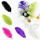 Colored Ostrich Feathers Wedding Party Home Wholesale Quality Natural Decoration