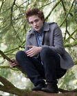 Robert Pattinson Movie Photo [S280222] Size Choice