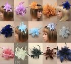 PACK OF 3 / 6 FABRIC & FEATHER FLOWER FASCINATOR ON CLEAR COMB - SP-
