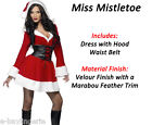 Miss Santa Christmas Outfit Xmas Office Party Fancy Dress Costume Claus Father