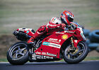 CARL FOGARTY 05 (DUCATI) WORLD SUPERBIKES PHOTO PRINT