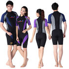1mm Neoprene Diving Surfing Shorty Short Sleeve Jumpsuit Wetsuit Rash Guard