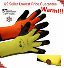 Warm Safety Snow Winter Insulated Double Lining Rubber Coated Work Gloves