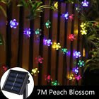 7M 50 Led Solar Christmas String Lights Blossom Flower Fairy Lamps Outdoor Xmas