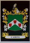CAIRNS Family Coat of Arms Crest - Choice of Mount or Framed