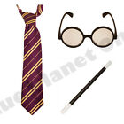 MENS LADIES HARRY POTTER STRIPED TIE GLASSES WAND GRYFFINDOR BOOK FANCY DRESS